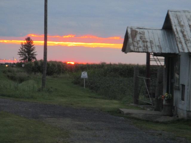 dawn0826.jpg