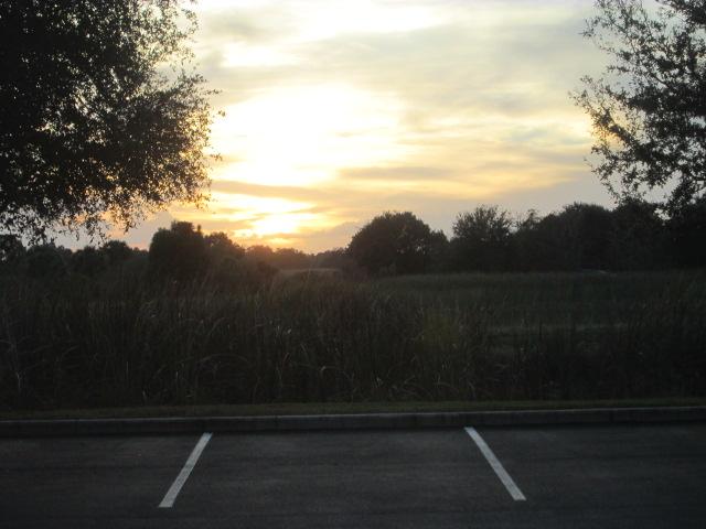 dusk1219.jpg
