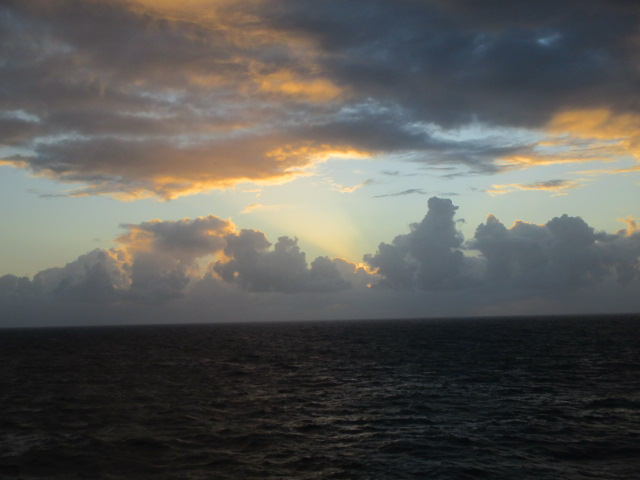 dawn1116.jpg